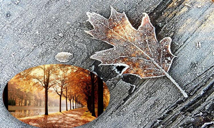 meteo noiembrie