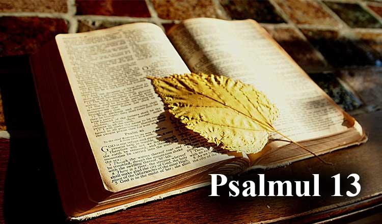 Psalmul 13 pentru izgonirea demonului înfricoșător